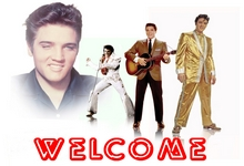 Elvis DVD Elvis Presley Live Concert Elvis DVD On Tour Death Las Vegas